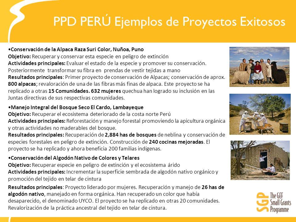 PPD PERÚ Ejemplos de Proyectos Exitosos Conservación de la Alpaca Raza Suri Color, Nuñoa, Puno Objetivo: Recuperar y conservar esta especie en peligro