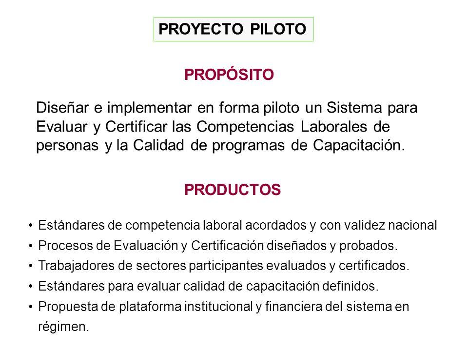 PROYECTO PILOTO PRODUCTOS Estándares de competencia laboral acordados y con validez nacional Procesos de Evaluación y Certificación diseñados y probados.