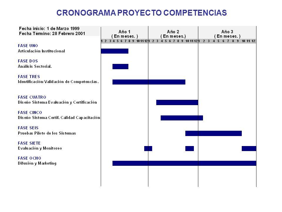 CRONOGRAMA PROYECTO COMPETENCIAS