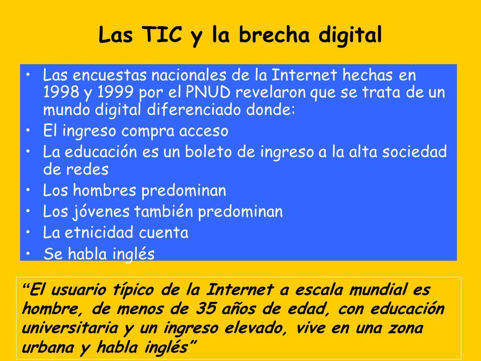Las TIC y la brecha digital Las encuestas nacionales de la Internet hechas en 1998 y 1999 por el PNUD revelaron que se trata de un mundo digital difer