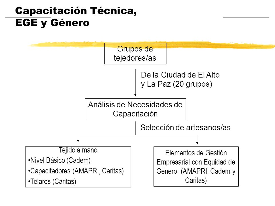 Grupos de tejedores/as Análisis de Necesidades de Capacitación Tejido a mano Nivel Básico (Cadem) Capacitadores (AMAPRI, Caritas) Telares (Caritas) El