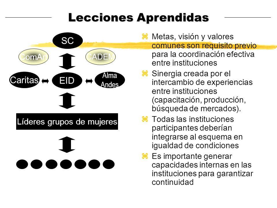 Lecciones Aprendidas zMetas, visión y valores comunes son requisito previo para la coordinación efectiva entre instituciones zSinergia creada por el i