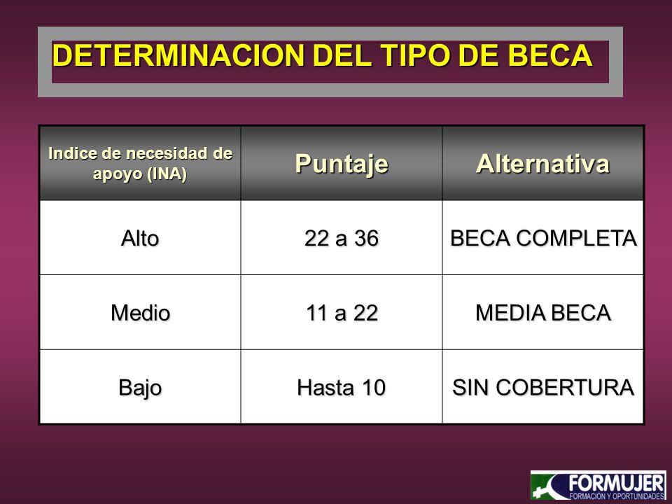 Indice de necesidad de apoyo (INA) PuntajeAlternativa Alto 22 a 36 BECA COMPLETA Medio 11 a 22 MEDIA BECA Bajo Hasta 10 SIN COBERTURA DETERMINACION DEL TIPO DE BECA