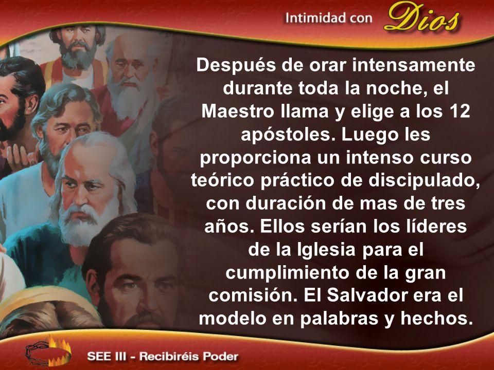 Después de orar intensamente durante toda la noche, el Maestro llama y elige a los 12 apóstoles. Luego les proporciona un intenso curso teórico prácti