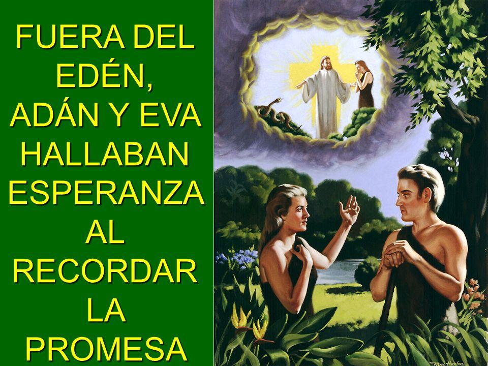 FUERA DEL EDÉN, ADÁN Y EVA HALLABAN ESPERANZA AL RECORDAR LA PROMESA DEL SEÑOR