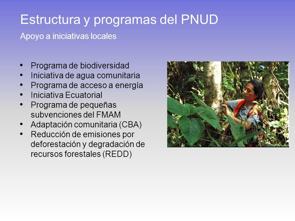 7 Programa de biodiversidad Iniciativa de agua comunitaria Programa de acceso a energía Iniciativa Ecuatorial Programa de pequeñas subvenciones del FMAM Adaptación comunitaria (CBA) Reducción de emisiones por deforestación y degradación de recursos forestales (REDD) Estructura y programas del PNUD Apoyo a iniciativas locales