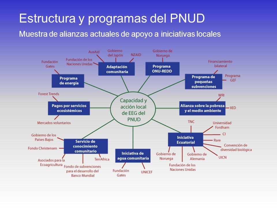 Estructura y programas del PNUD Muestra de alianzas actuales de apoyo a iniciativas locales