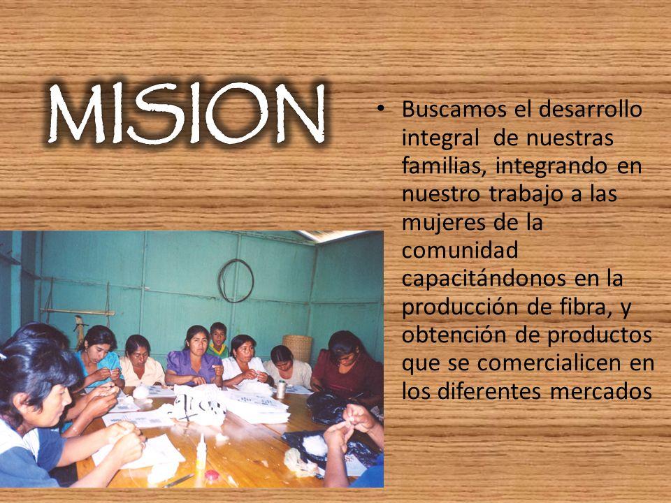 Buscamos el desarrollo integral de nuestras familias, integrando en nuestro trabajo a las mujeres de la comunidad capacitándonos en la producción de f