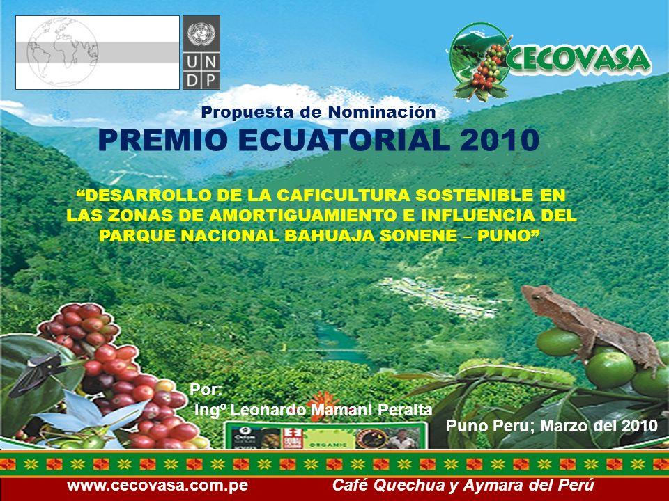 www.cecovasa.com.pe Café Quechua y Aymara del Perú Resultados alcanzados 2,250 productores implementan normas del PCE y de la RAS, en un total de 18,266.00 Has consistentes en; 4616 Has de café en Producción, 500 Has de Café en Crecimiento, 960 Has de otros cultivos, 12,211.00 Has entre Bosque secundario (purma) y Bosque primario que son considerados como áreas de protección.