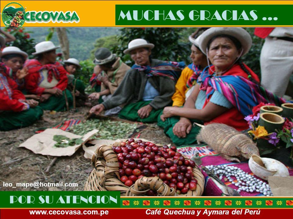 www.cecovasa.com.pe Café Quechua y Aymara del Perú POR SU ATENCION MUCHAS GRACIAS … leo_mape@hotmail.com