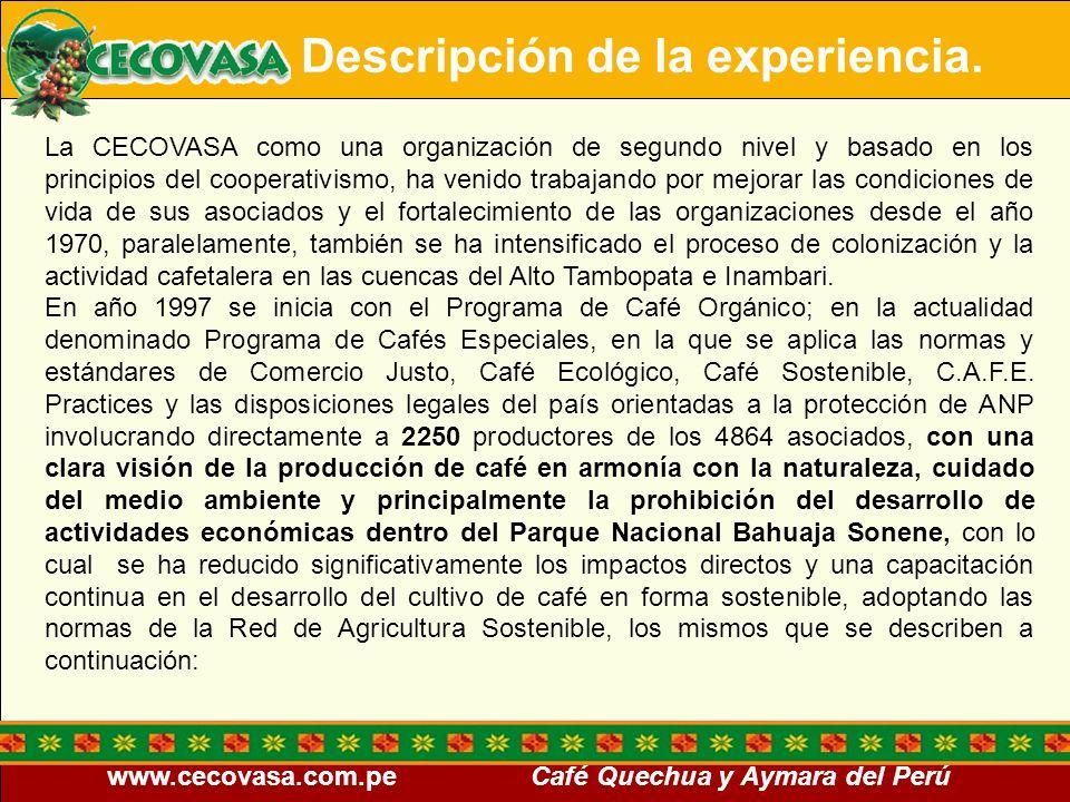 www.cecovasa.com.pe Café Quechua y Aymara del Perú Descripción de la experiencia. La CECOVASA como una organización de segundo nivel y basado en los p