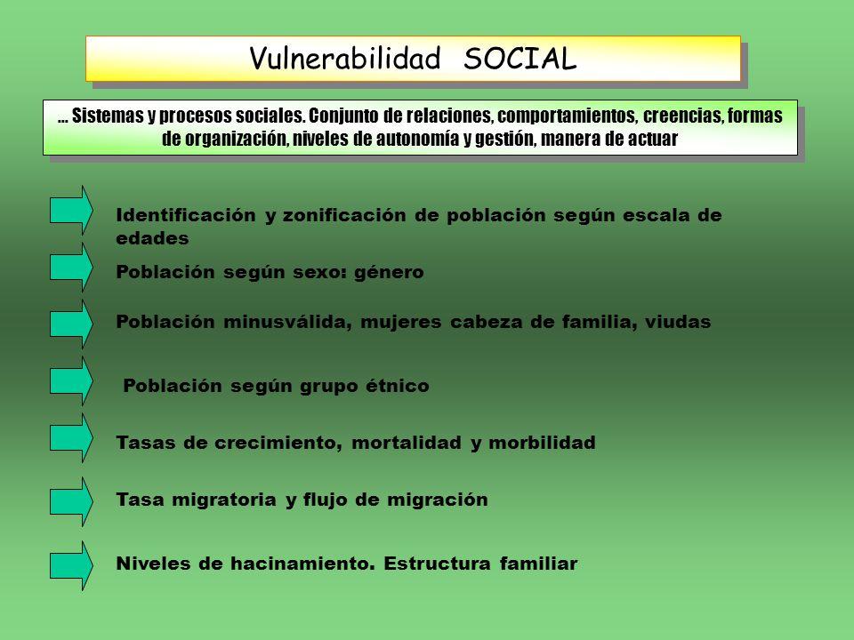 Vulnerabilidad SOCIAL... Sistemas y procesos sociales. Conjunto de relaciones, comportamientos, creencias, formas de organización, niveles de autonomí