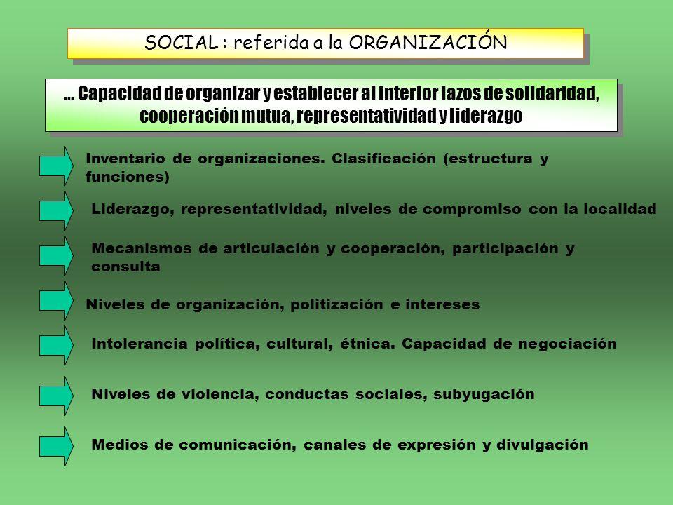 SOCIAL : referida a la ORGANIZACIÓN... Capacidad de organizar y establecer al interior lazos de solidaridad, cooperación mutua, representatividad y li