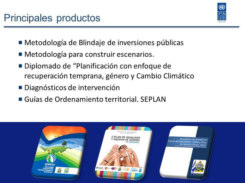 Principales productos Metodología de Blindaje de inversiones públicas Metodología para construir escenarios. Diplomado de Planificación con enfoque de