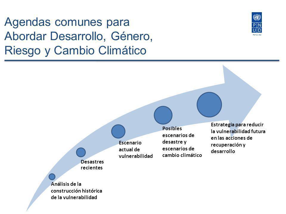 Honduras Agendas comunes para Abordar Desarrollo, Género, Riesgo y Cambio Climático Análisis de la construcción histórica de la vulnerabilidad Desastr