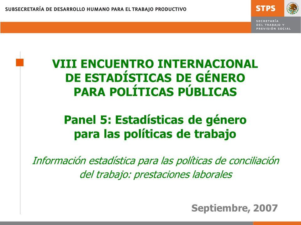 VIII ENCUENTRO INTERNACIONAL DE ESTADÍSTICAS DE GÉNERO PARA POLÍTICAS PÚBLICAS Panel 5: Estadísticas de género para las políticas de trabajo Informaci
