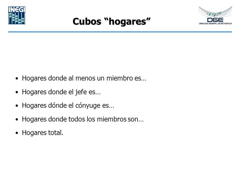 Cubos hogares Hogares donde al menos un miembro es… Hogares donde el jefe es… Hogares dónde el cónyuge es… Hogares donde todos los miembros son… Hogares total.