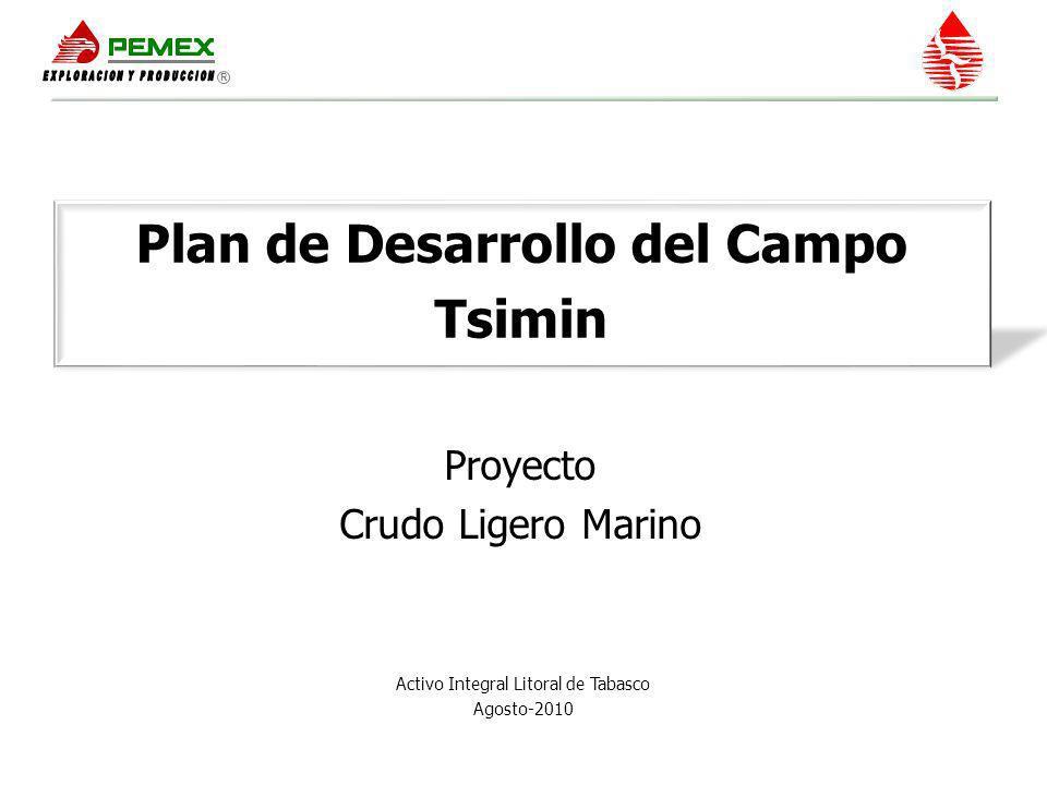 Objetivo y Alcance Objetivo Alcance: Recuperar la reserva 2P de 208 Mmbpce, mediante el desarrollo del campo Tsimin, equivalente a 72 MMb de aceite y 667.2 MMMpcd de gas.