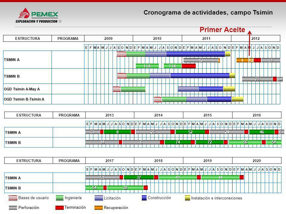 Cronograma de actividades, campo Tsimin Perforación Terminación Recuperación ESTRUCTURAPROGRAMA2009201020112012 EFMAMJJASONDEFMAMJJASONDEFMAMJJASONDEF