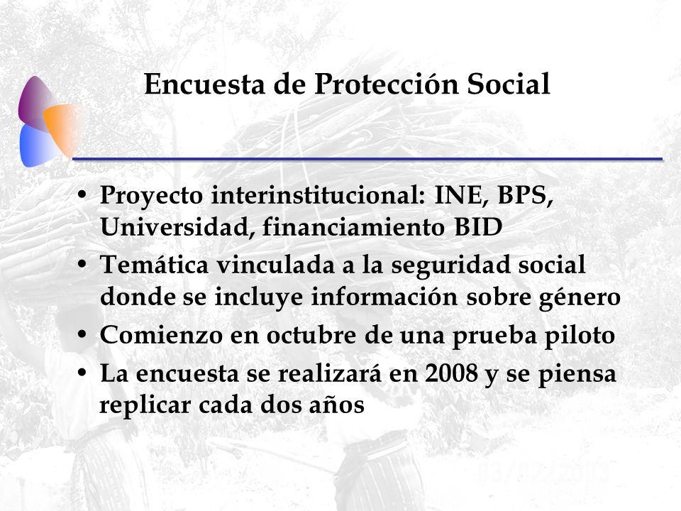 Encuesta de Protección Social Proyecto interinstitucional: INE, BPS, Universidad, financiamiento BID Temática vinculada a la seguridad social donde se incluye información sobre género Comienzo en octubre de una prueba piloto La encuesta se realizará en 2008 y se piensa replicar cada dos años