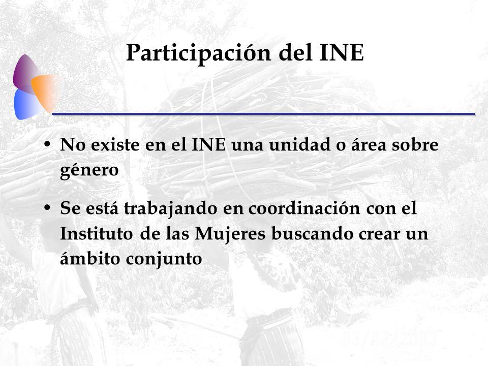 Participación del INE No existe en el INE una unidad o área sobre género Se está trabajando en coordinación con el Instituto de las Mujeres buscando crear un ámbito conjunto