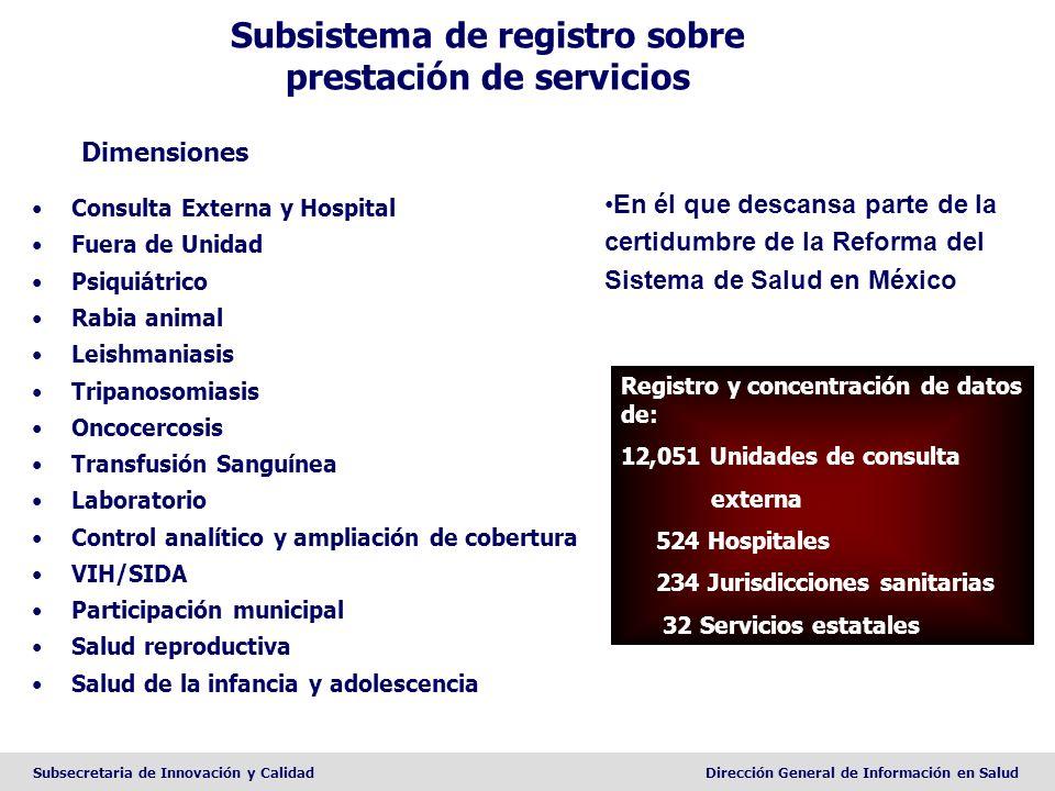 Subsecretaria de Innovación y CalidadDirección General de Información en Salud Subsistema de registro sobre prestación de servicios Dimensiones Consul