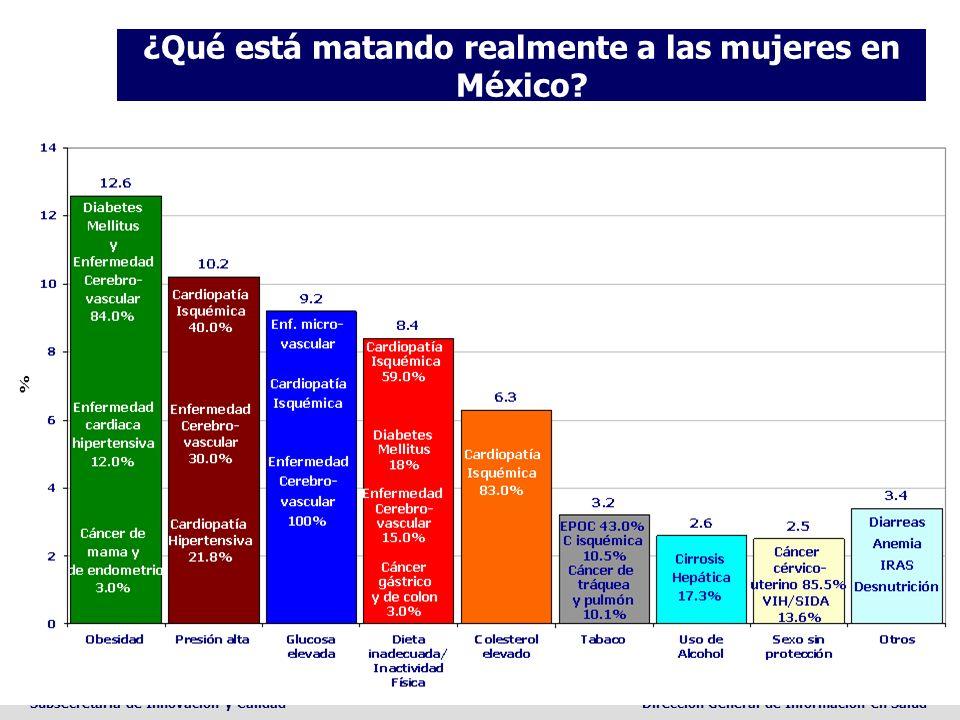 Subsecretaria de Innovación y CalidadDirección General de Información en Salud ¿Qué está matando realmente a las mujeres en México?