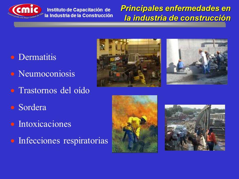 Instituto de Capacitación de la Industria de la Construcción Principales enfermedades en Principales enfermedades en la industria de construcción Derm