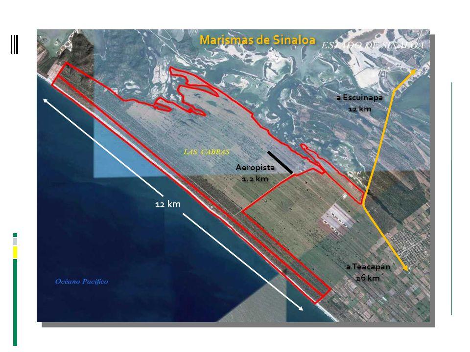 Marismas de Sinaloa a Escuinapa 12 km a Escuinapa 12 km a Teacapán 26 km a Teacapán 26 km Aeropista 1.2 km Aeropista 1.2 km 12 km