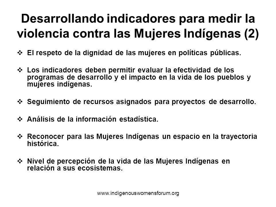 www.indigenouswomensforum.org Desarrollando indicadores para medir la violencia contra las Mujeres Indígenas (2) El respeto de la dignidad de las mujeres en políticas públicas.