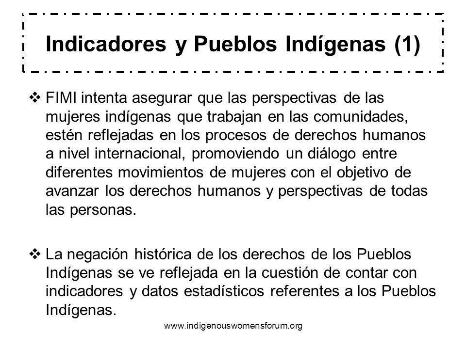 www.indigenouswomensforum.org FIMI intenta asegurar que las perspectivas de las mujeres indígenas que trabajan en las comunidades, estén reflejadas en los procesos de derechos humanos a nivel internacional, promoviendo un diálogo entre diferentes movimientos de mujeres con el objetivo de avanzar los derechos humanos y perspectivas de todas las personas.