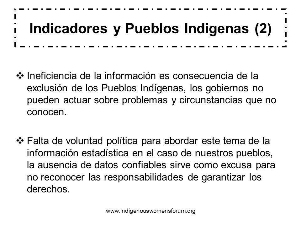 www.indigenouswomensforum.org Ineficiencia de la información es consecuencia de la exclusión de los Pueblos Indígenas, los gobiernos no pueden actuar sobre problemas y circunstancias que no conocen.