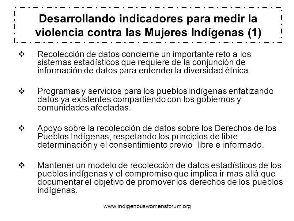 www.indigenouswomensforum.org Desarrollando indicadores para medir la violencia contra las Mujeres Indígenas (1) Recolección de datos concierne un importante reto a los sistemas estadísticos que requiere de la conjunción de información de datos para entender la diversidad étnica.