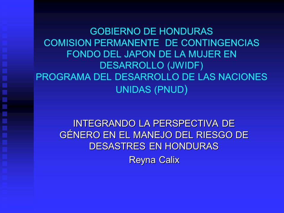 GOBIERNO DE HONDURAS COMISION PERMANENTE DE CONTINGENCIAS FONDO DEL JAPON DE LA MUJER EN DESARROLLO (JWIDF) PROGRAMA DEL DESARROLLO DE LAS NACIONES UN