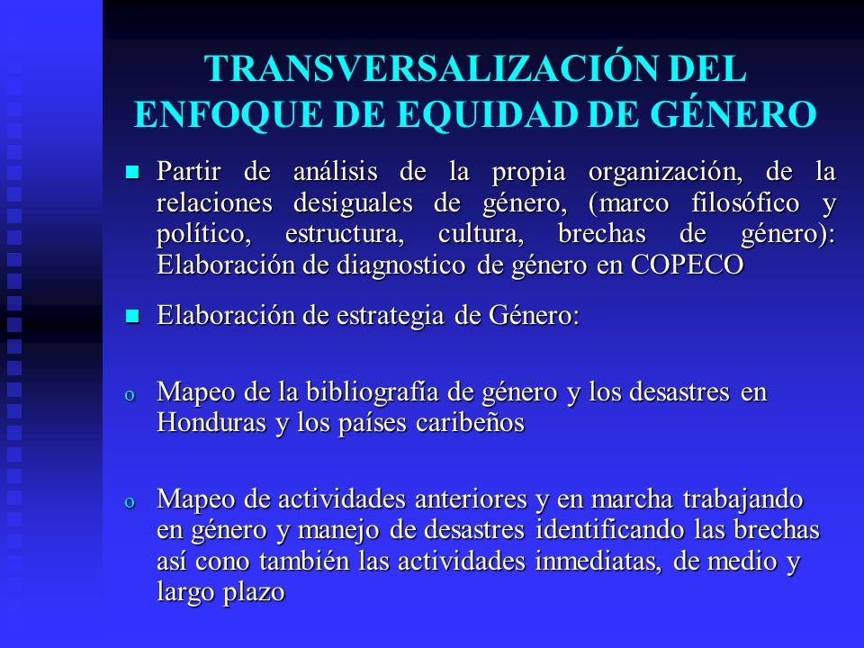 TRANSVERSALIZACIÓN DEL ENFOQUE DE EQUIDAD DE GÉNERO Partir de análisis de la propia organización, de la relaciones desiguales de género, (marco filosó