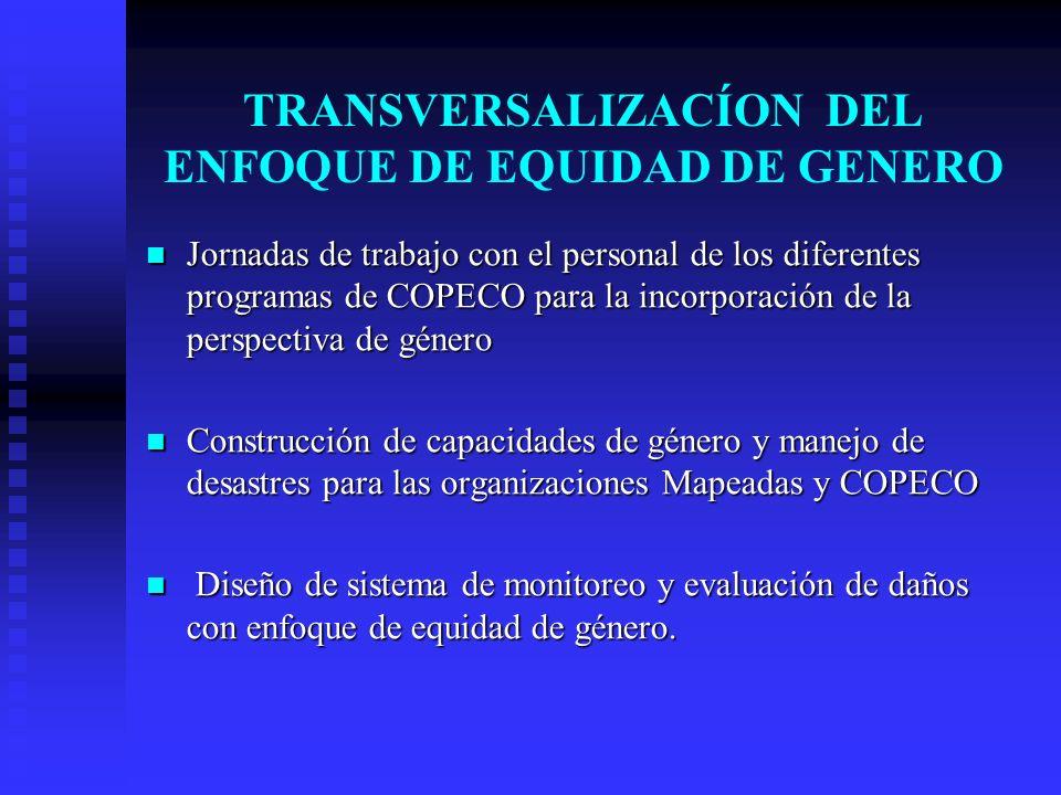 TRANSVERSALIZACÍON DEL ENFOQUE DE EQUIDAD DE GENERO Jornadas de trabajo con el personal de los diferentes programas de COPECO para la incorporación de