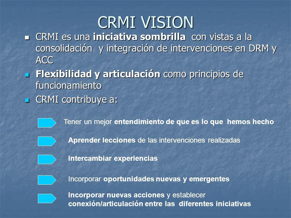 CRMI VISION CRMI es una iniciativa sombrilla con vistas a la consolidación y integración de intervenciones en DRM y ACC CRMI es una iniciativa sombril
