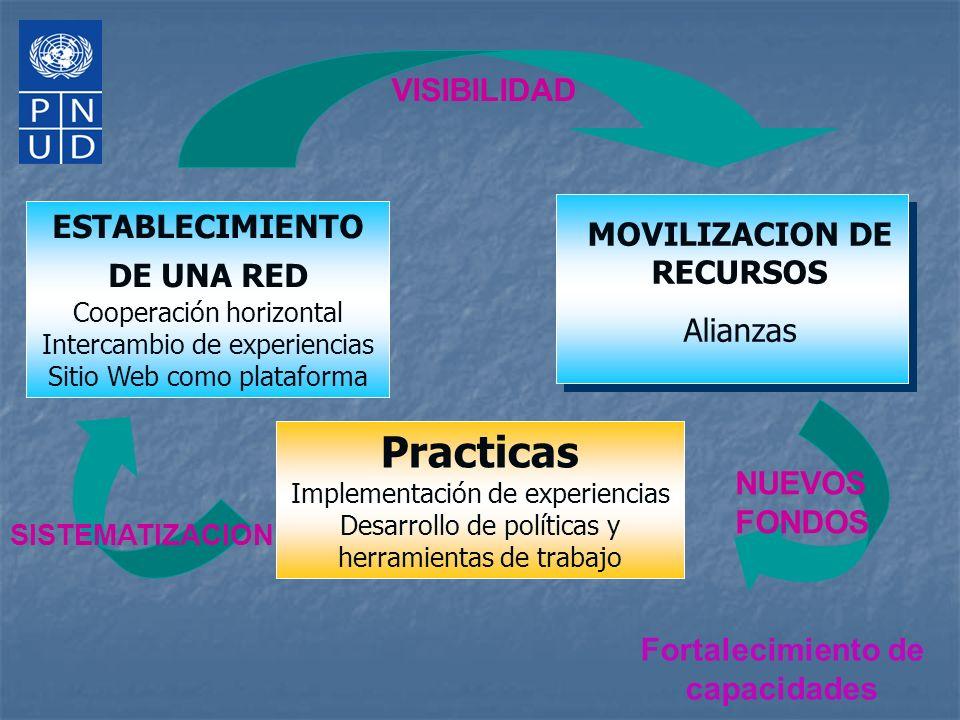 ESTABLECIMIENTO DE UNA RED Cooperación horizontal Intercambio de experiencias Sitio Web como plataforma Fortalecimiento de capacidades MOVILIZACION DE