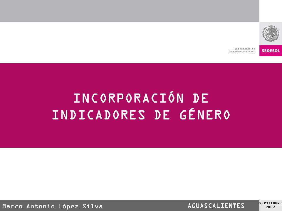 AGUASCALIENTES SEPTIEMBRE 2007 INCORPORACIÓN DE INDICADORES DE GÉNERO Mtro. Marco Antonio López Silva