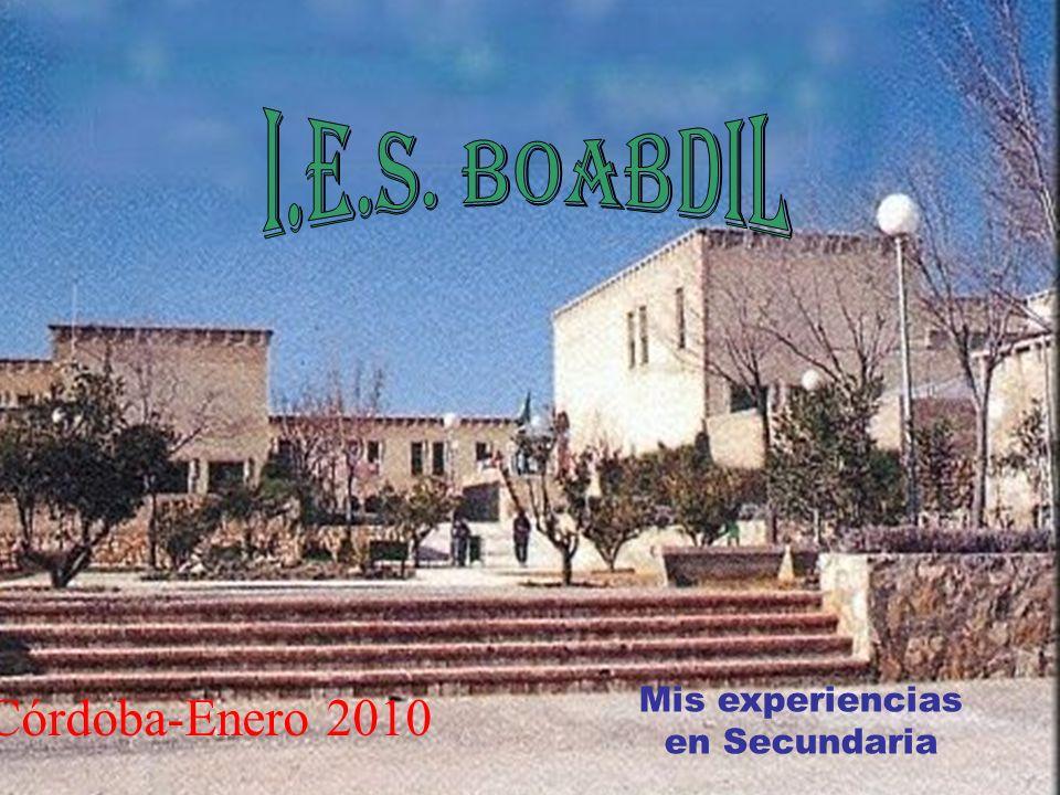 Córdoba-Enero 2010 Mis experiencias en Secundaria
