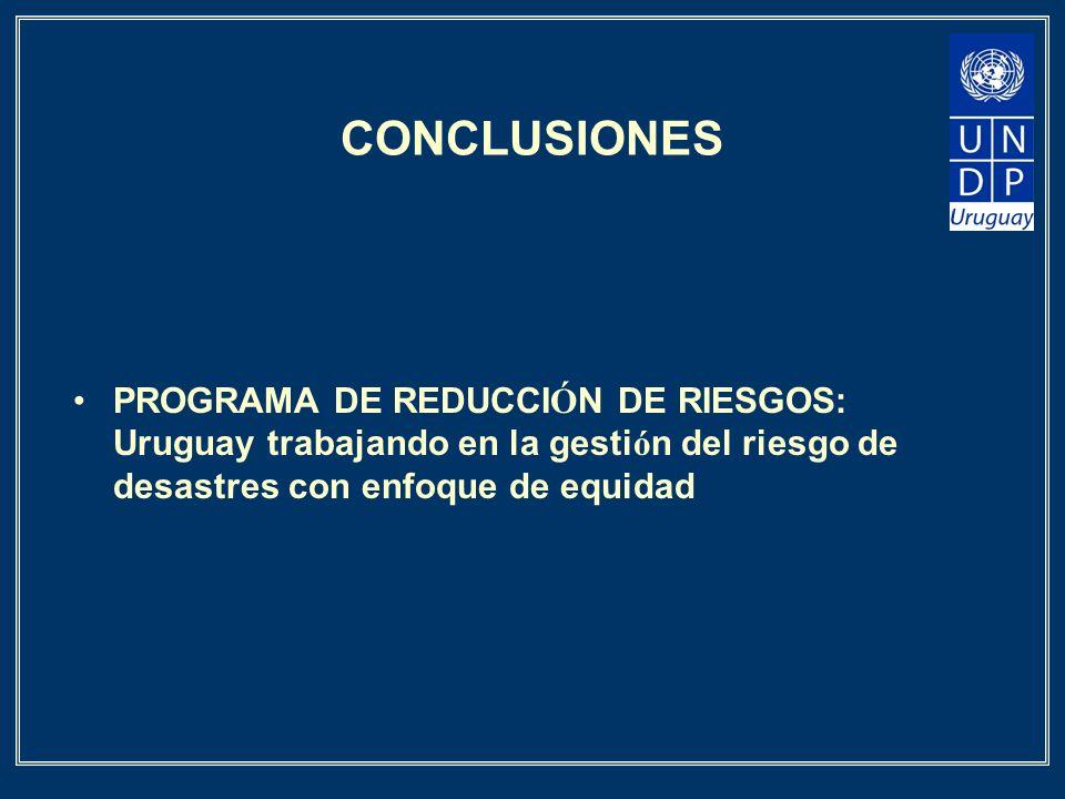 CONCLUSIONES PROGRAMA DE REDUCCI Ó N DE RIESGOS: Uruguay trabajando en la gesti ó n del riesgo de desastres con enfoque de equidad