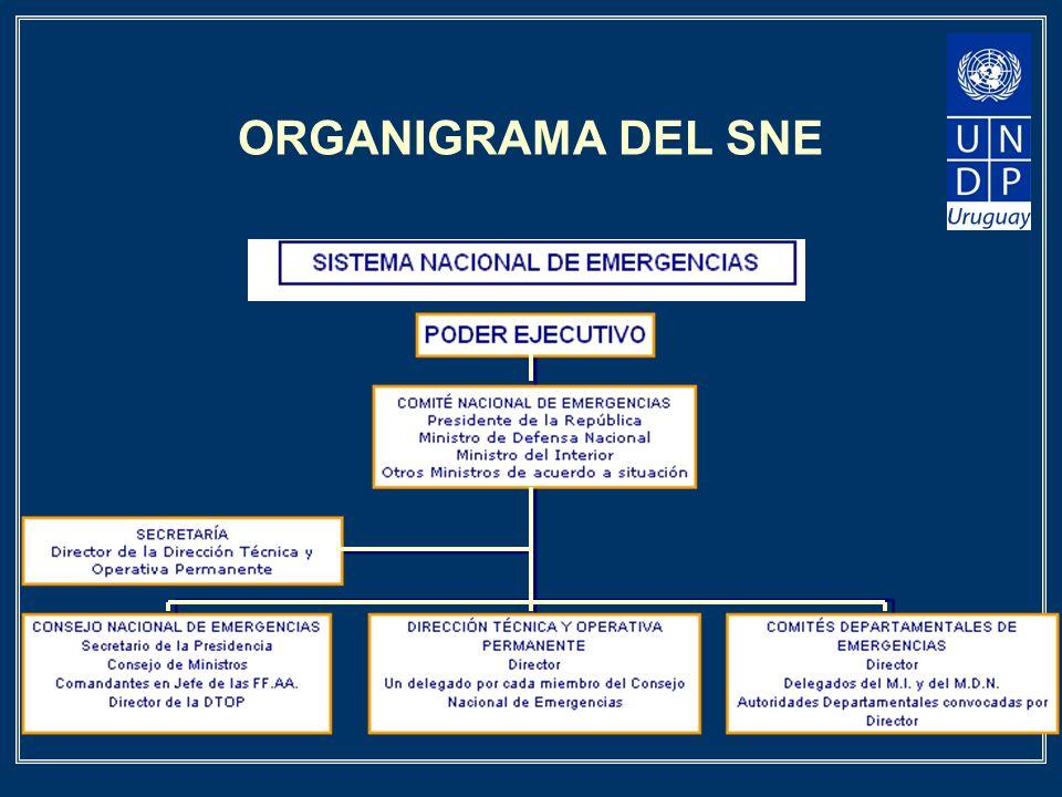 ORGANIGRAMA DEL SNE