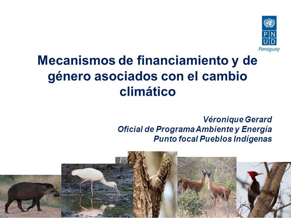 Mecanismos de financiamiento y de género asociados con el cambio climático Véronique Gerard Oficial de Programa Ambiente y Energía Punto focal Pueblos Indígenas