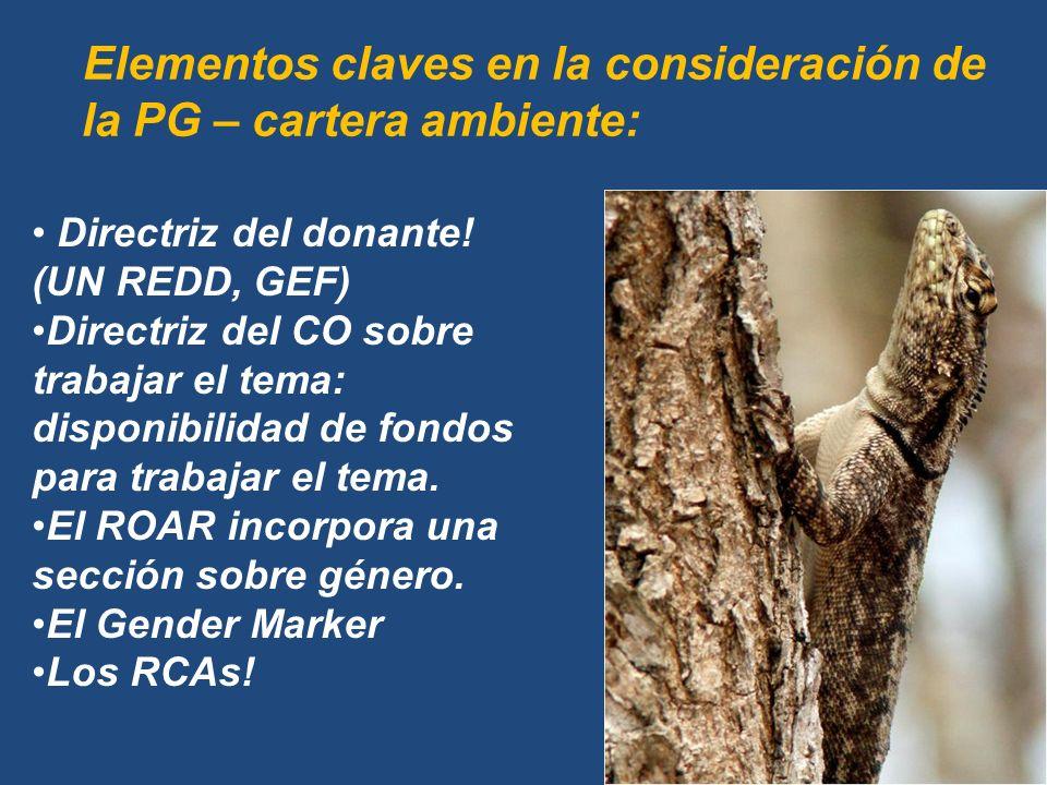 Elementos claves en la consideración de la PG – cartera ambiente: Directriz del donante.