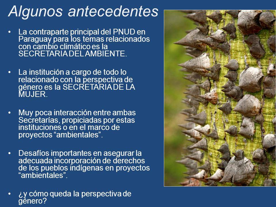La contraparte principal del PNUD en Paraguay para los temas relacionados con cambio climático es la SECRETARIA DEL AMBIENTE.
