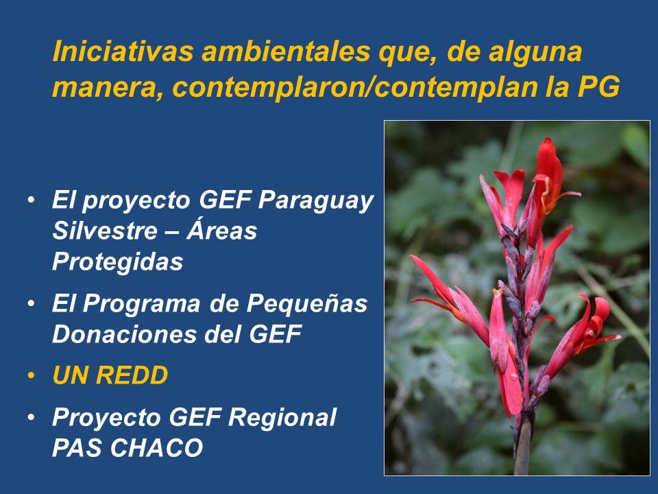 Iniciativas ambientales que, de alguna manera, contemplaron/contemplan la PG El proyecto GEF Paraguay Silvestre – Áreas Protegidas El Programa de Pequeñas Donaciones del GEF UN REDD Proyecto GEF Regional PAS CHACO