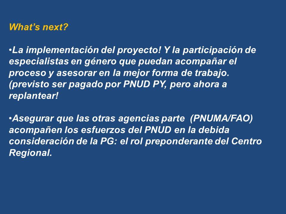 Whats next. La implementación del proyecto.