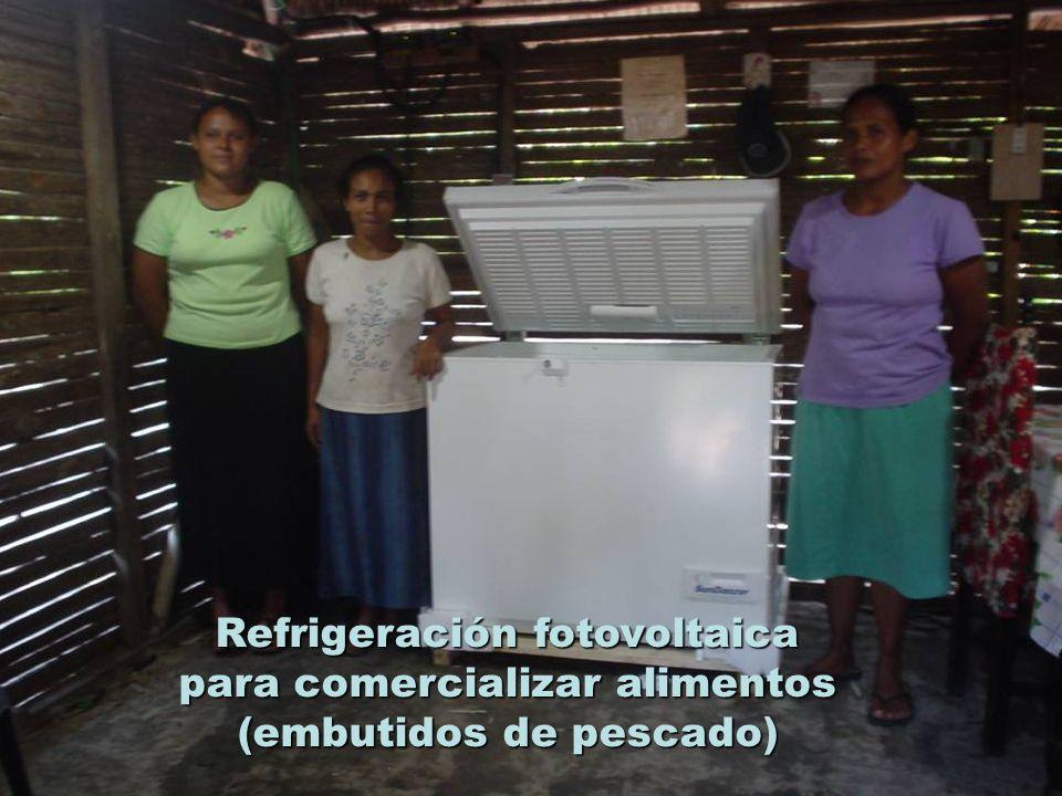 Refrigeración fotovoltaica para comercializar alimentos (embutidos de pescado)