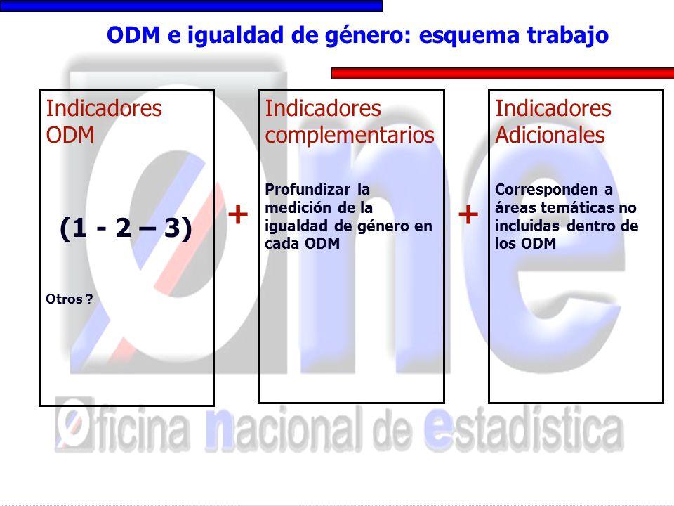 ODM e igualdad de género: esquema trabajo Indicadores ODM (1 - 2 – 3) Otros ? Indicadores complementarios Profundizar la medición de la igualdad de gé