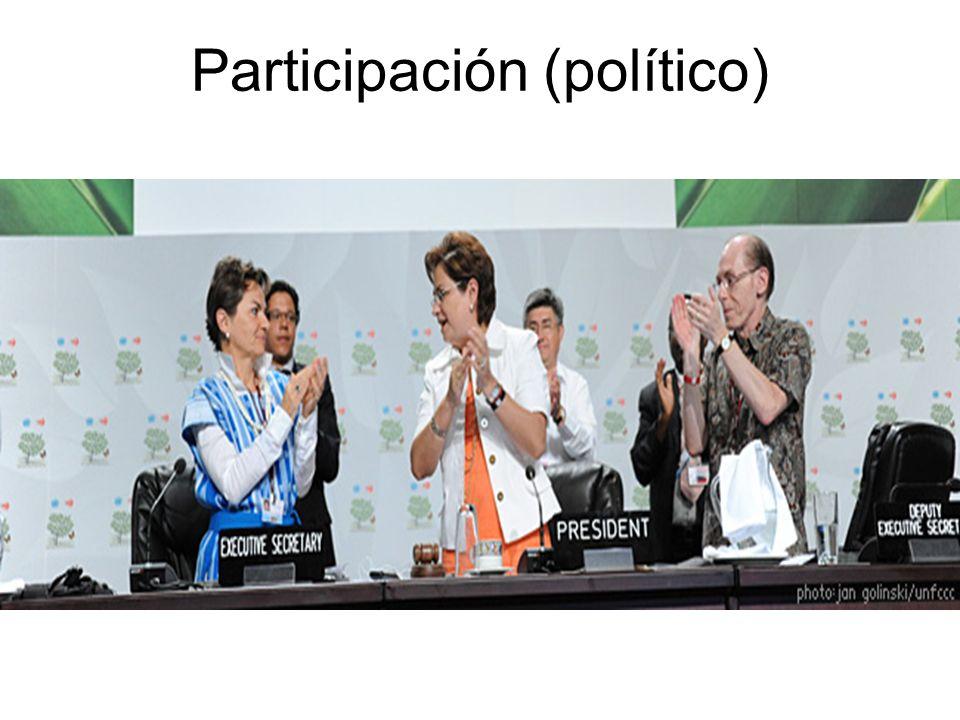 Participación (político)